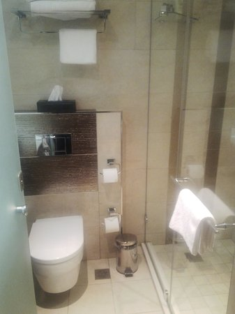 Coastlands Musgrave Hotel: The bathroom is the size of a cupboard!  The vanity is behind the door!