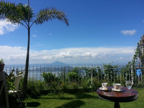 Joaquin's Bed and Breakfast: view at the garden