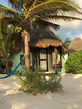 La Zebra : Beach front cabana