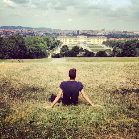 Gärten von Schönbrunn: view from the hill at the Gloriette