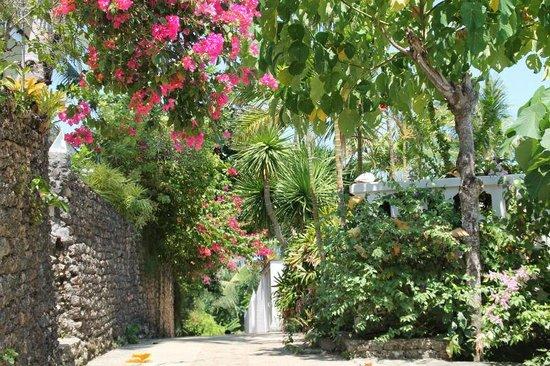 Alargo Villa Residence: inside the villa area way from gate