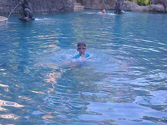 Novotel Surabaya Hotel and Suites: kolam renang yg besar