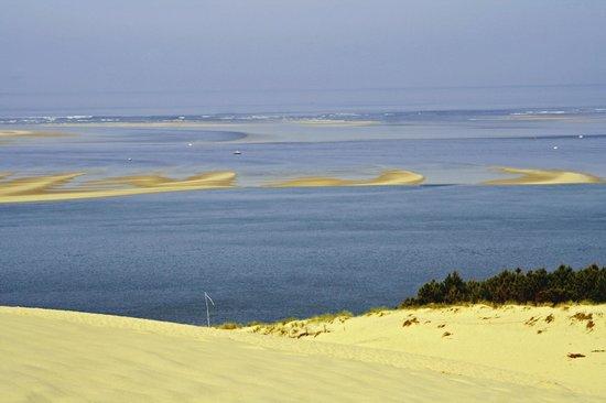 Dune du Pilat : duna e banchi