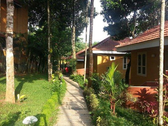 Karapuzha Village Resort: Cottage view