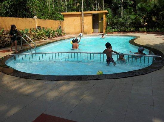 Karapuzha Village Resort: Swimming pool
