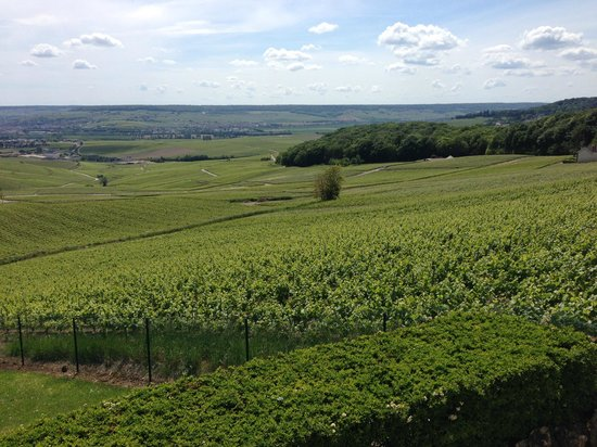 Royal Champagne: One part of the view
