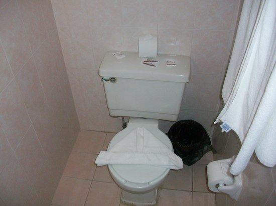 Hotel Posada de Roger : roomy bathroom