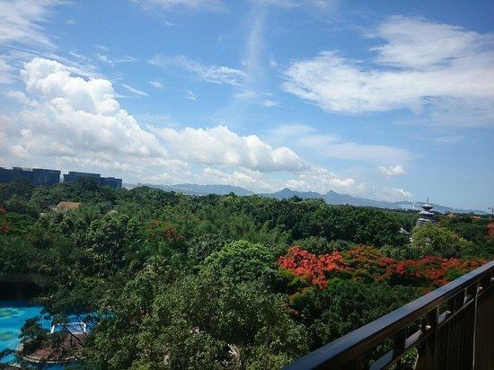 InterContinental Shenzhen : Beautiful view from balcony