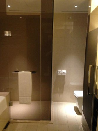 Sheraton Grand Incheon Hotel: shower on the left, toilet on the right