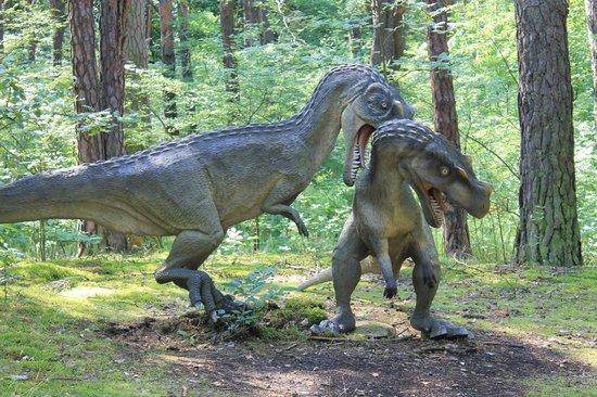 Solec Kujawski, Polska: Dinozaury