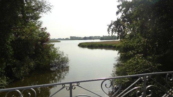 Blankaart Nature Reserve: étang du parc