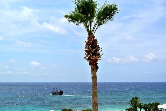 Napa Mermaid Hotel and Suites: вид из окна