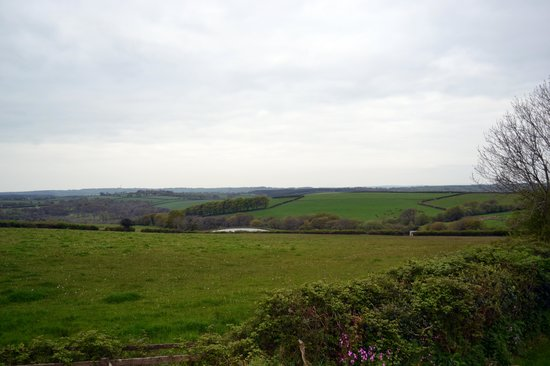 Little Widefield Farm: View from Winkleigh Room
