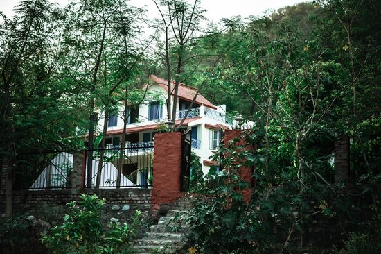 Sattva Spa and Wellness Retreat: Another view of the cottages