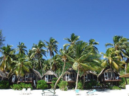 Paradise Cove Lodges: The Huts