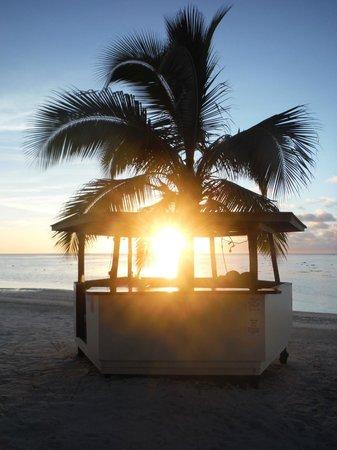 Paradise Cove Lodges: Coconut Shack