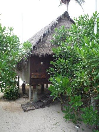 Paradise Cove Lodges: Our hut