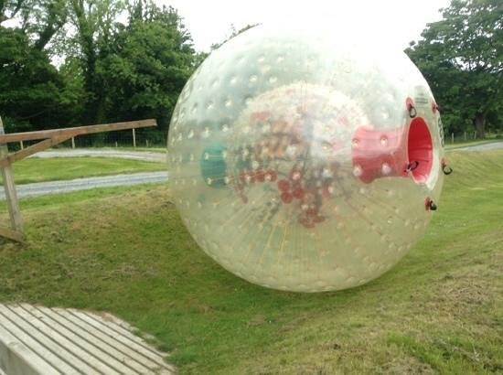 Westport House & Pirate Adventure Park : Zorb ball just been pushed