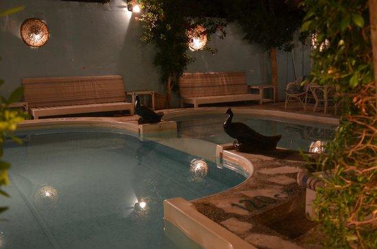 El Gezira Hotel: la piscina di sera