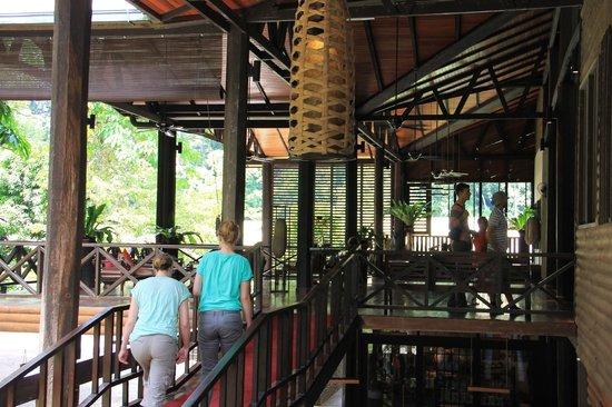 Borneo Rainforest Lodge: lovley designs
