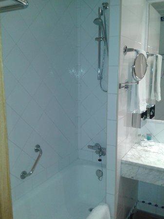 Saray Hotel: Baño.1