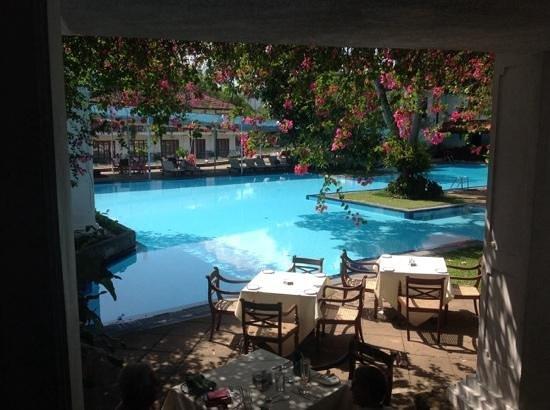 Mahaweli Reach Hotel : pool side at Mahaweli Reach