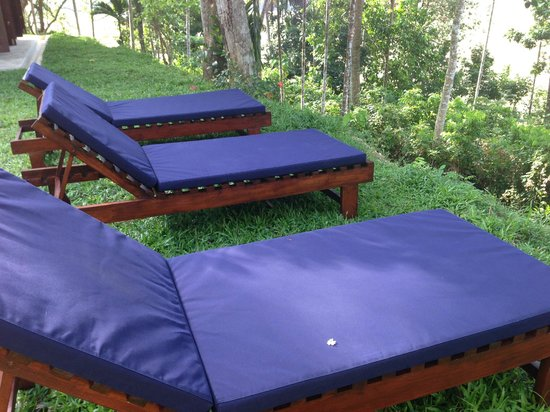 Kalahe House: Sunloungers to enjoy the sights and sounds of Kalahe
