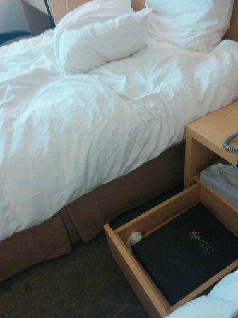 Hotel Venue G: 서랍 속 쓰레기