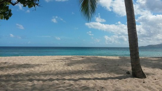 Grenadian by Rex Resorts: Another day in paradise ...beach left of pool