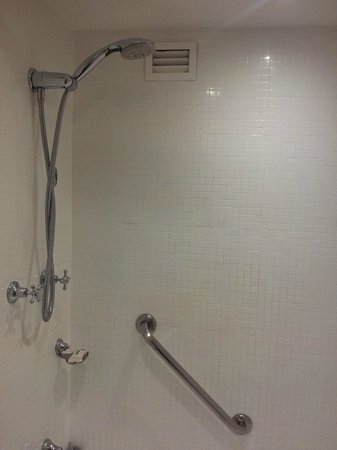 Holiday Inn Old Sydney: shower