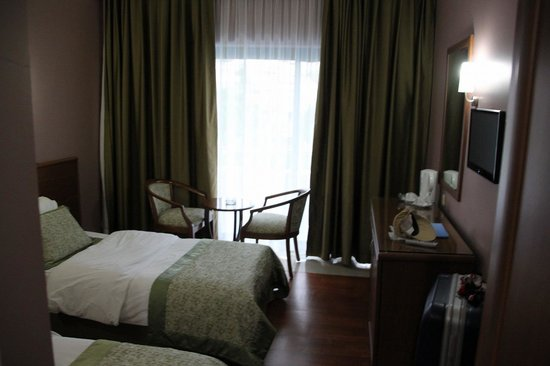 Halic Park Hotel : 狭い客室です