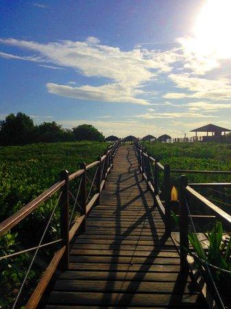 Melia Buenavista: Acceso a la playa este