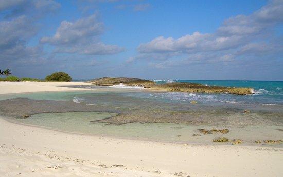 Melia Buenavista: playa norte