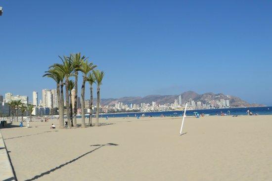 Servigroup Torre Dorada : strand