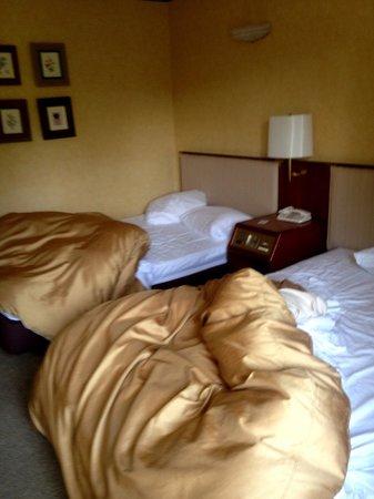 Narita View Hotel: Bedroom after sleeping