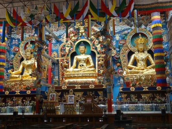 Namdroling Nyingmapa Monastery: The Golden Budha