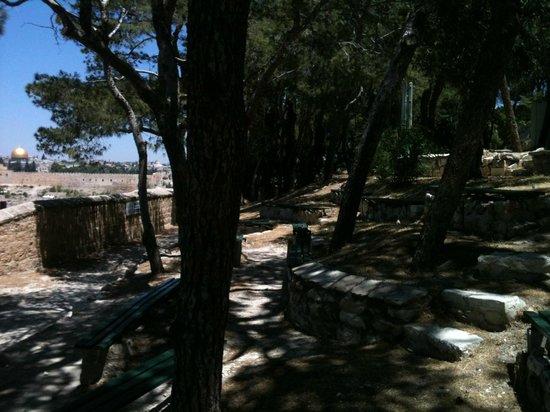 La Maison d'Abraham: Parc
