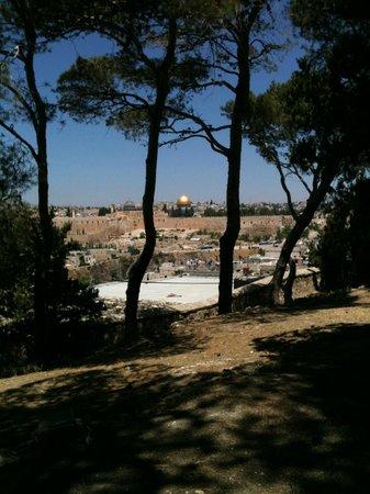 La Maison d'Abraham: Parc et vue