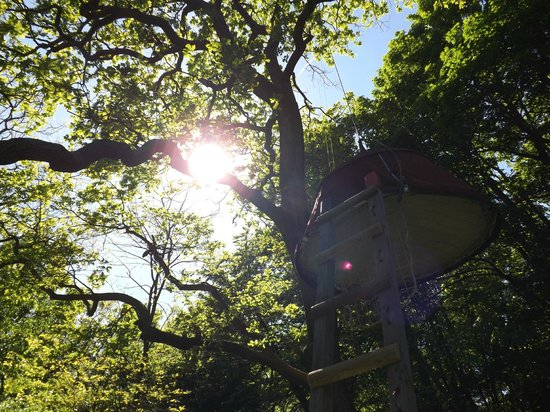 Woody Park - Tentes suspendues : Tente suspendue