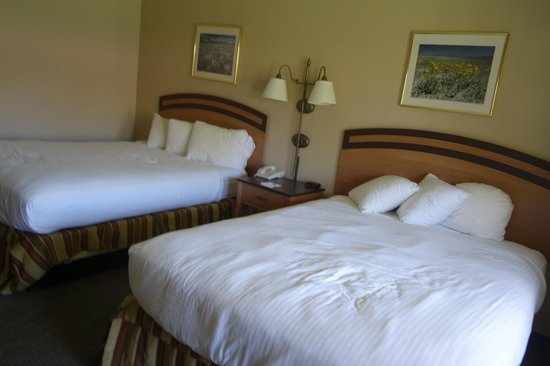 The Oasis at Death Valley (formerly Furnace Creek Resort) : our huge room with 2 queen beds