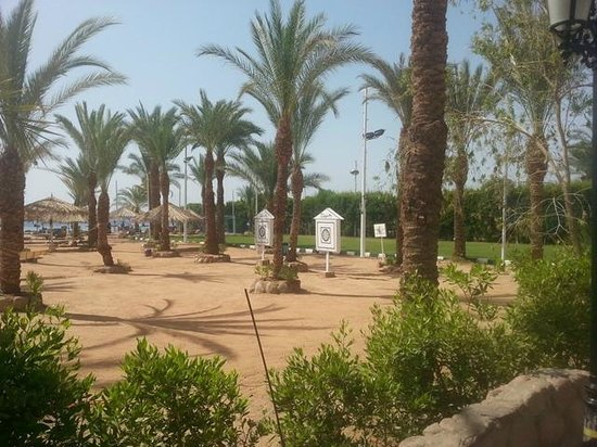 Hilton Sharm El Sheikh Fayrouz Resort : 12