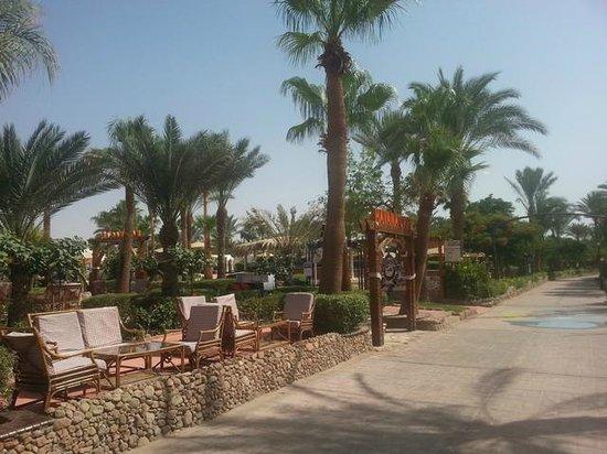 Hilton Sharm El Sheikh Fayrouz Resort : 9