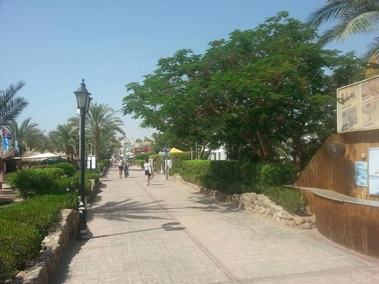 Hilton Sharm El Sheikh Fayrouz Resort : 6