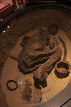 Musée égyptologique de Turin : Mummia