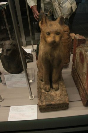 Musée égyptologique de Turin : Statua gatto animale sacro