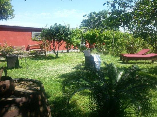 Albergo La Vigna: Un jardin magique