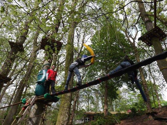 Woody Park : Joutes suspendues