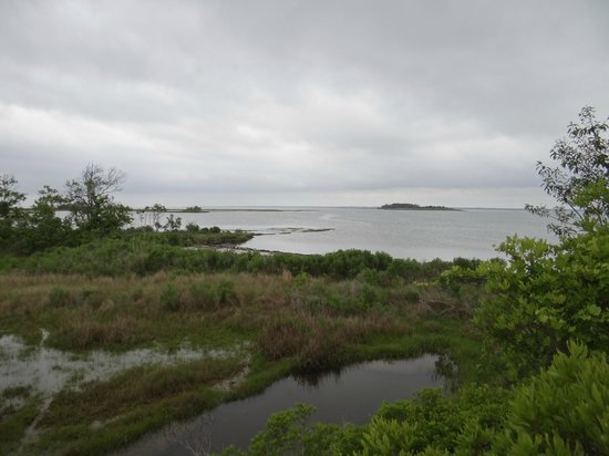 Assateague Island National Seashore: Assateague National state park