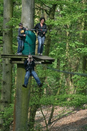 Woody Park : Famille parcours