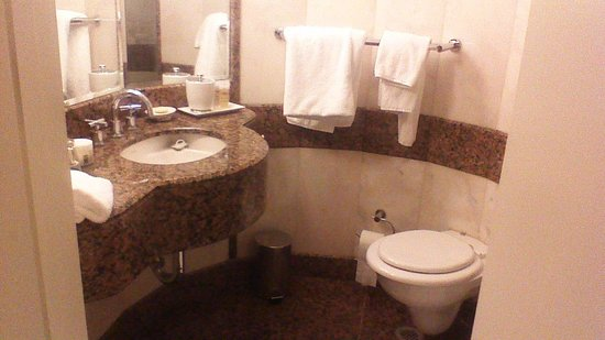 Sofitel Sydney Wentworth: Tiny bathroom!